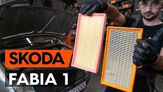 gale ir priekyje Stabdžių trinkelių komplektas keitimas SKODA FABIA Combi (6Y5) - vaizdo pamokomis