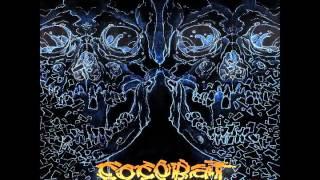 COCOBAT Searching For Change - 2009 release - riyacar man storm fur...