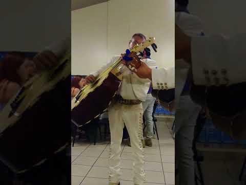 (773) 563-0422 Mariachi Viva México Chicago IL