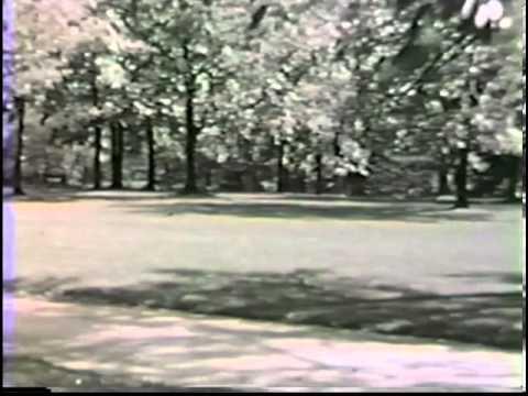 Lake Forest Norwood Park