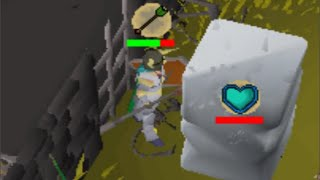 I have played Runescape nonstop for 30 days... for this moment