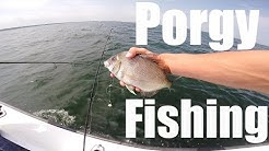 Porgies All Day - Port Jefferson, New York || Long Island Sound Fishing