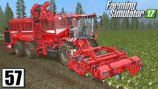 Zbiór buraka - Farming Simulator 17 (#57) | gameplay pl