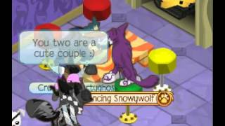 Dating on Animal Jam-BUSTED