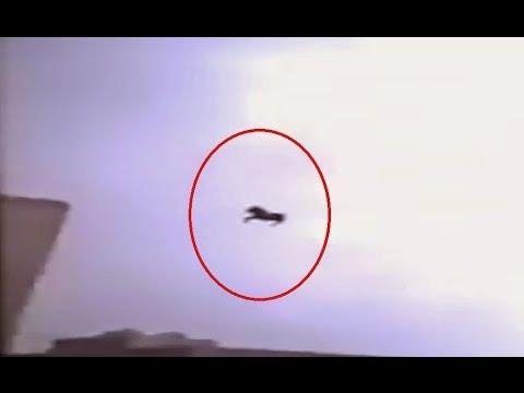 Flying Black Horse Caught On Camera In Jeddah[NYATA!!]Kuda Hitam Terbang Di Jeddah