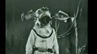 Diver Dan:  The BP Episode!