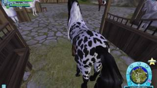Buying the new horse colors| SSO