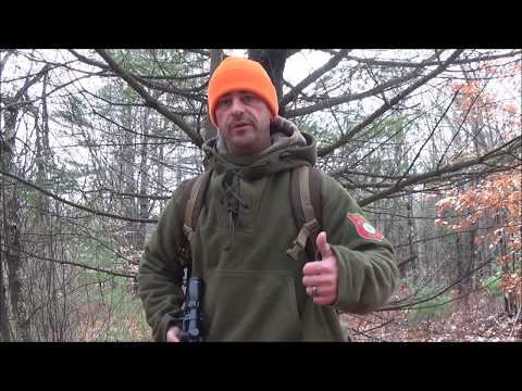 Woodland Hunting Strategies (Stands vs Ground)