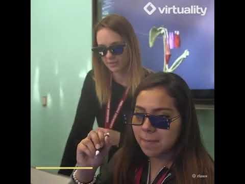 Virtuality Education