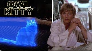 Star Wars - with my cat OwlKitty