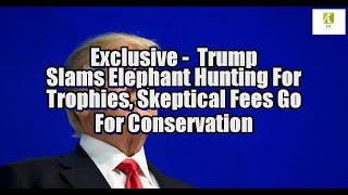 Exclusive: Trump Slams Elephant Hunting For Trophies, Skeptical Fees Go For Conservation