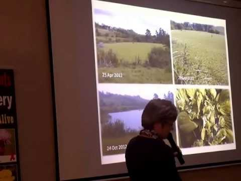 Denise Gillespie - Mass-rearing of Biocontrol Agents at SASRI (2010-2012) - May, 2013