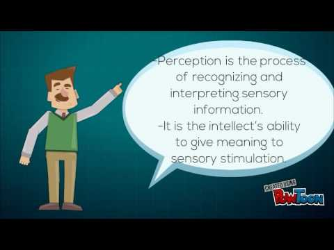 Sensory/Perception