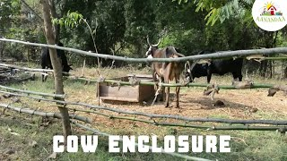 Making an Enclosure for the Cows