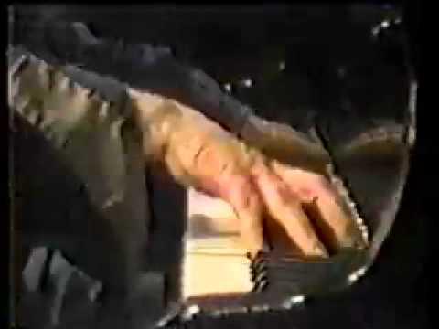 Ain't misbehavin' - Wellstood. 1985