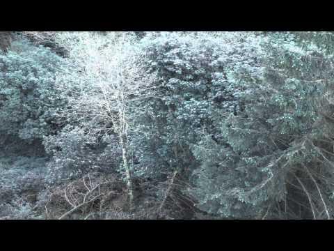 DJ John: Alors On Danse | Free Trance Music | Royalty Free Music