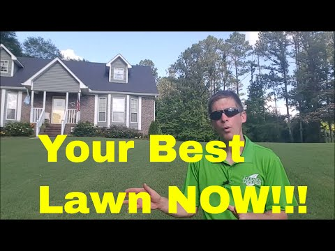 How to Grow a Great Lawn  - Tips from a Lawn Care Professional