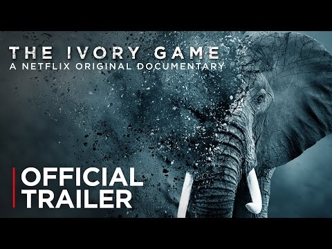 The Ivory Game   Official Trailer [HD]   Netflix