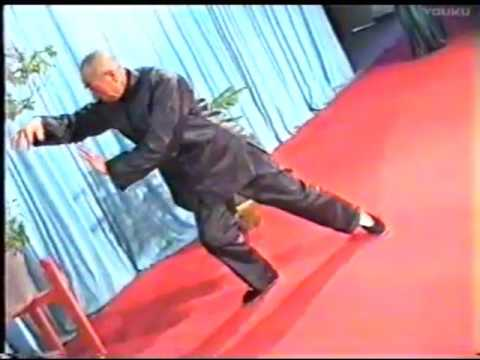 Taijiquan, Ding laoshi, 66 years old (entry on 20.01.1996)