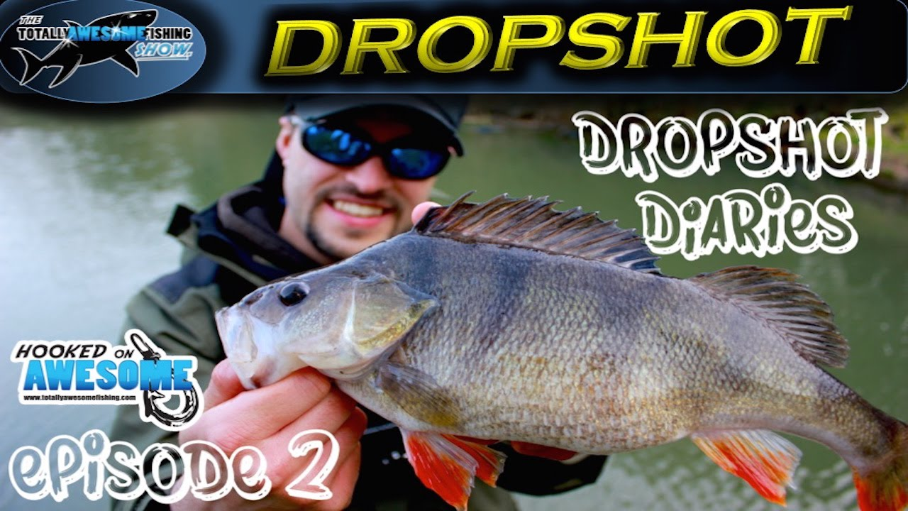 DROPSHOT DIARIES - Ep  2 - Canals | TAFishing – Cooca Fishing