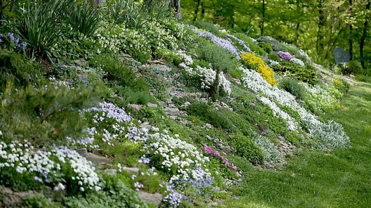 Landscaping Ideas for Sloped Backyard -Garden Design Ideas ... on Backyard Hill Landscaping Ideas  id=26251