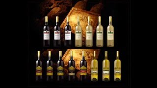 Wino Wino :D.