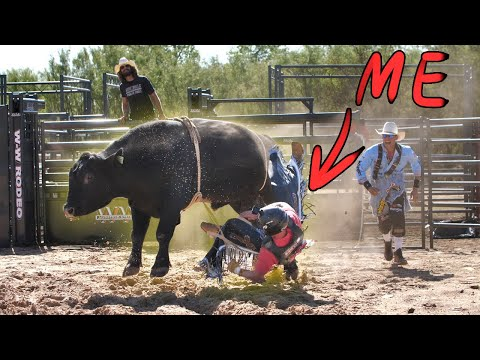 Riding a BULL for 1M Subscribers... (STOMPED)