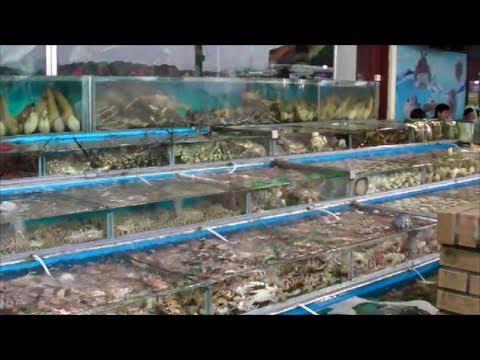 Live Fish and Seafood Restaurants in Sai Kung, Hong Kong. Part 1