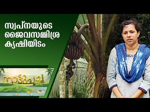 Mixed Organic Farming by Swapna Jaimes | Nattupacha  | Manorama News
