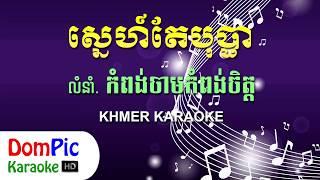 ស្នេហ៍តែបុប្ផា លំនាំបទ កំពង់ចាមកំពង់ចិត្ត ភ្លេងសុទ្ធ - Sne Te Bopha - DomPic Karaoke