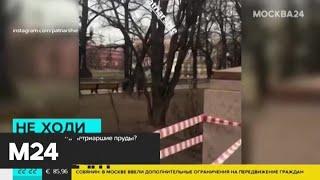 Вход на Патриаршие пруды ограничили из-за коронавируса - Москва 24
