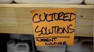 Cultured Solutions Nutrients @ Here We Grow - Hadley, MA Hydroponic Store (413) 584-FARM