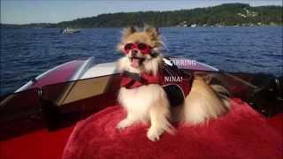 Nina's Magic Carpet Ride!