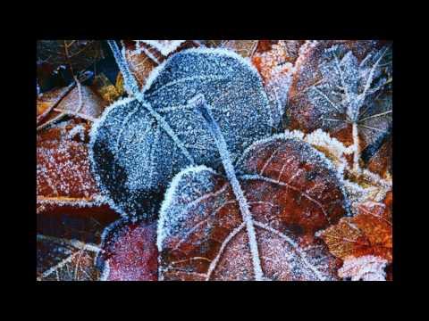 Красивая зима\Картинки :)))