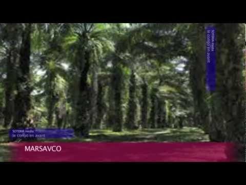 LA GEOGRAPHIE DANS LE DEVELOPPEMENT [ PART TWO ]  {SOTERIA MEDIA : LE CONGO EN AVANT}
