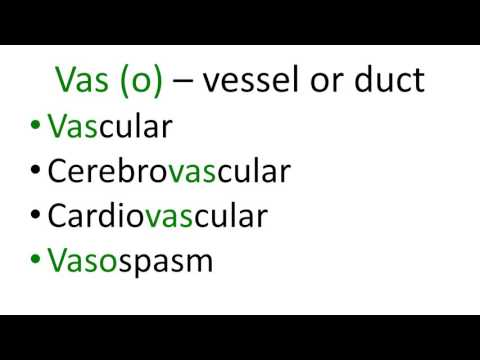 Medical terms 9,  Cardiovascular, blood vessels