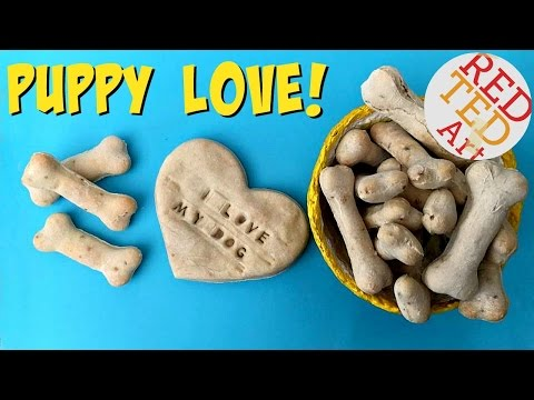Easy DIY Dog Biscuit Recipe