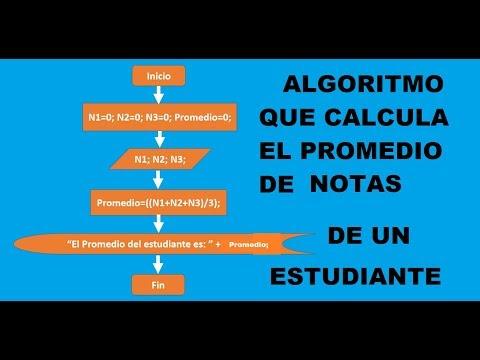 Algoritmo Que Calcula El Promedio De Notas De Un Estudiante
