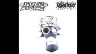 Gorgonized Dorks - Nuklear Flash Back