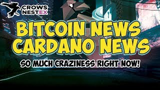 BITCOIN News - Cardano News - Crypto News