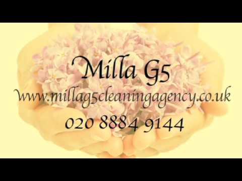Professional Domestic Cleaners in London - MillaG5 Cleaning Agency