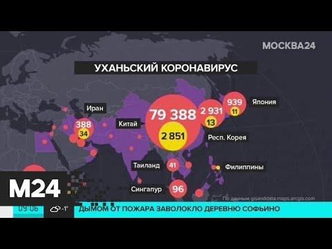 Число жертв коронавируса в Китае превысило 2,8 тысячи - Москва 24