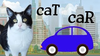 Gambar cover The CAR and the CAT - do we have common relatives?