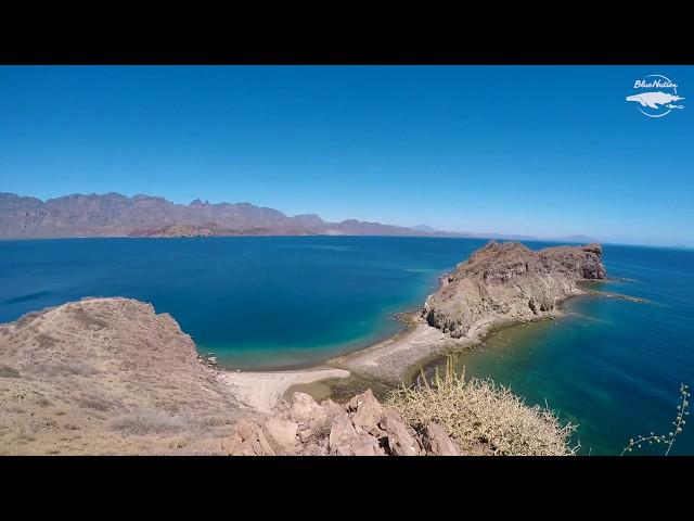 A visit to Danzante Island in Loreto, BCS, Mexico.