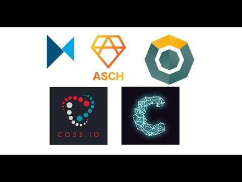 My top 5 cryptocurrency picks for November - Modum, Asch, Komodo, COSS, Cindicator