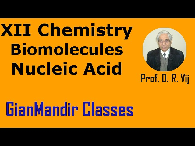 XII Chemistry | Biomolecules | Nucleic Acid by Gourav Sir