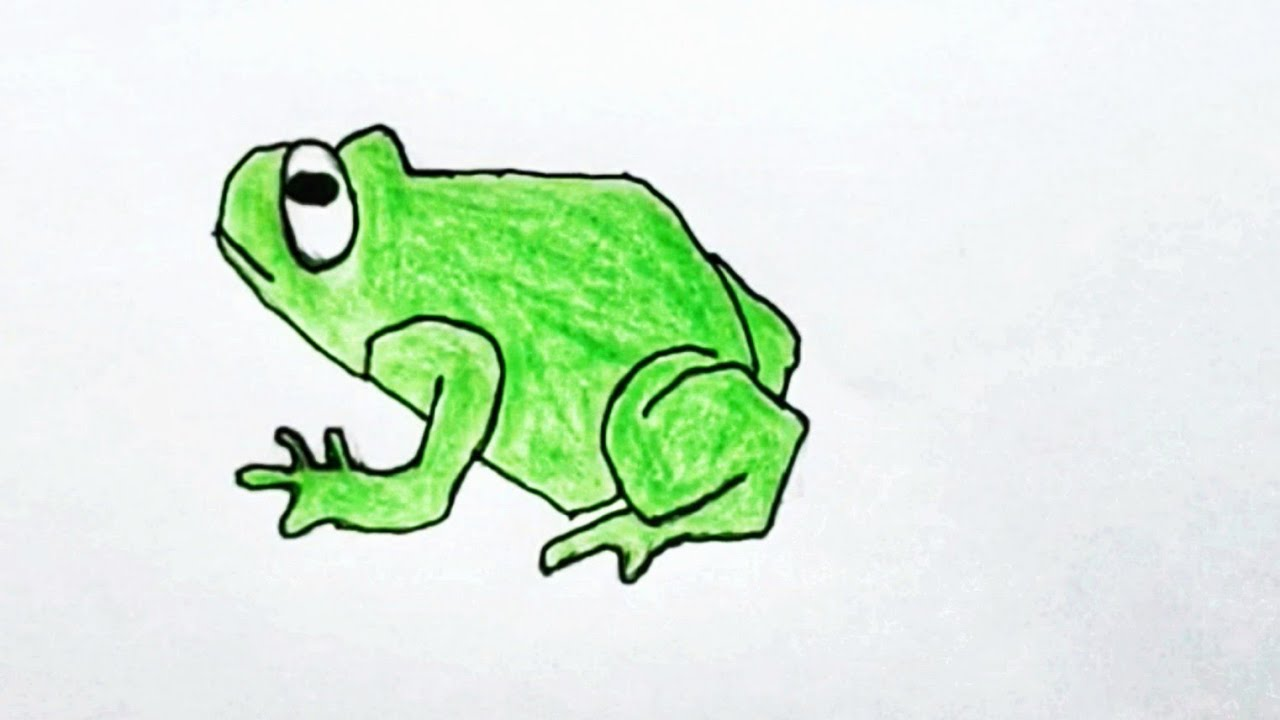 FROG: 🐸 How To Draw A Cartoon Frog, (Step By Step) — EASY ...