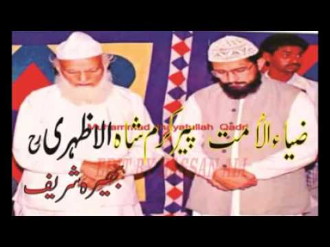 Al Shiekh Hashim Al Madani Comments for Prof Tahir ul Q ...