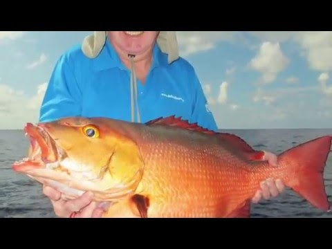 Sport Fishing on the Grand Banks of RODRIGUES December 2015