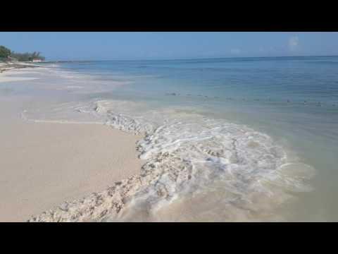 Fishing In Trelawny Jamaica
